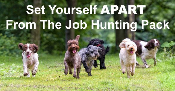 Set Yourself Apart From The Job Hunting Pack