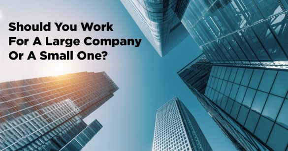 Should You Work For A Large Company Or A Small One?